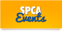 Click here to view our upcoming and past events